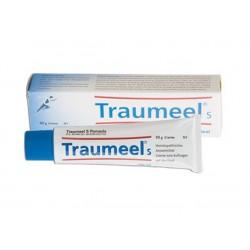 Traumeel S Heel pomada 50g