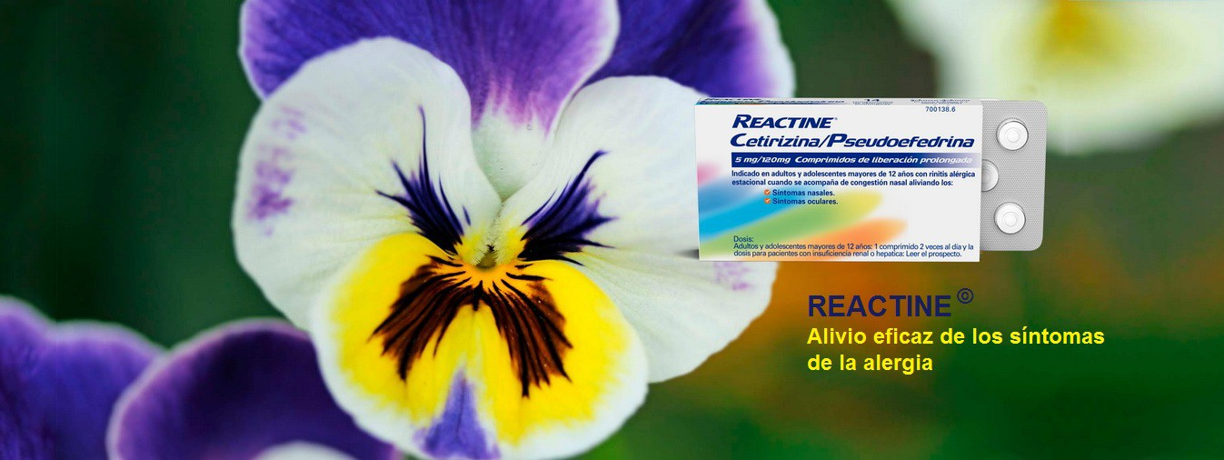 Reactine tablets